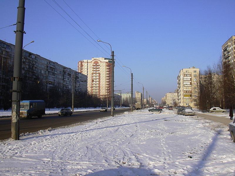 быть, фото улицы будапештская спб машине появился